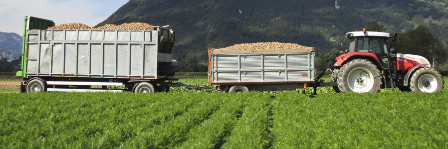 Landwirtschaft_2
