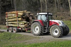 Holztransport01