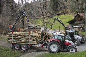 Holztransport02