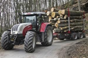 Holztransport03