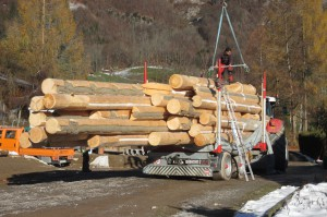 Holztransport08