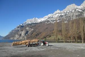 Holztransport11